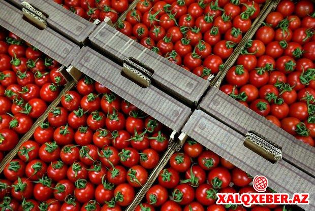 Rusiya bu dəfə də Azərbaycan pomidorlarını bəyənmədi