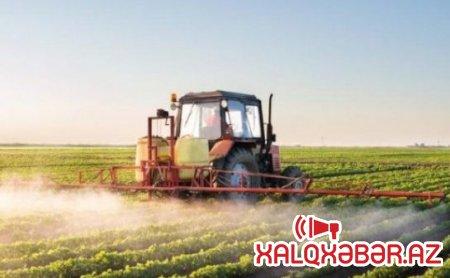 Nazirliyin milyonluq tenderi: 15 hektar ərazini doludan necə qoruyurlar?