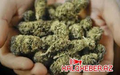 """""""Bandotdel"""" Bakıda əməliyyat keçirdi, 30 kq narkotik aşkarlandı"""