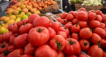 Qonşuların pomidor bəhanəsi: - Yerli aqronomlar onları təkzib edir