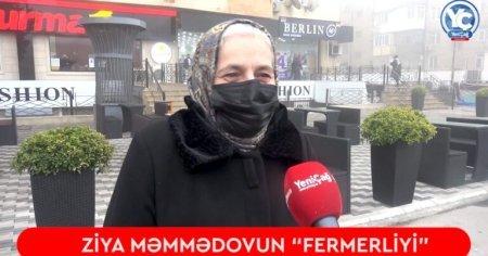 """Ziya Məmmədovun """"FERMERLİYİ"""": - """"Neçə il nazir olub, indi guya mal-qara saxlayır, qoyun otarır..."""""""